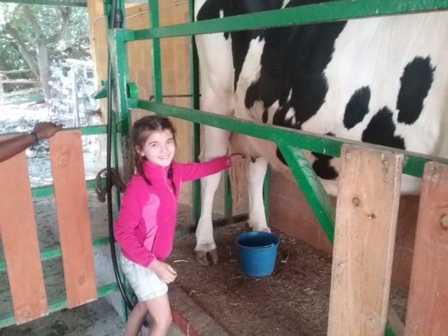 granja-escuela-ingles-4